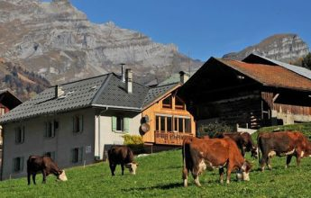 Discover the traditional mountain habitat in a typical hamlet