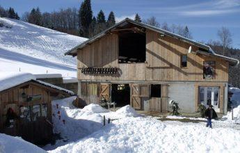 """The Farm """"Ferme des Croës Canailles"""